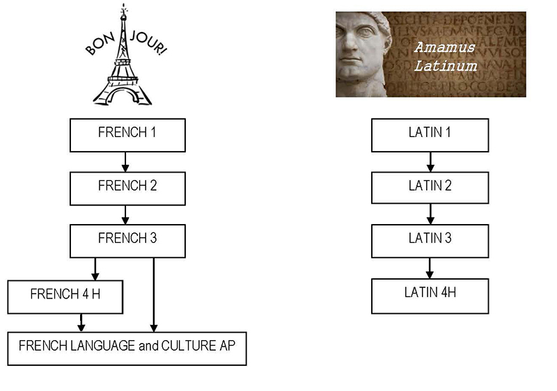 chart of French, and Latin Course Pathways